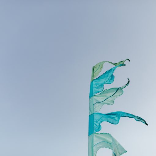 love vintage festival flags